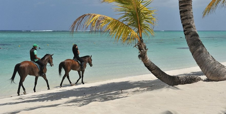 Balade à Cheval au Morne