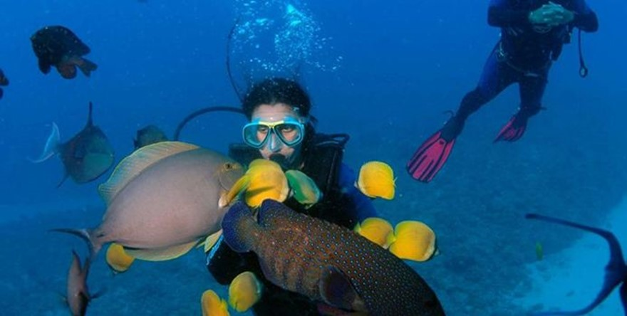Scuba diving in the Indian Ocean