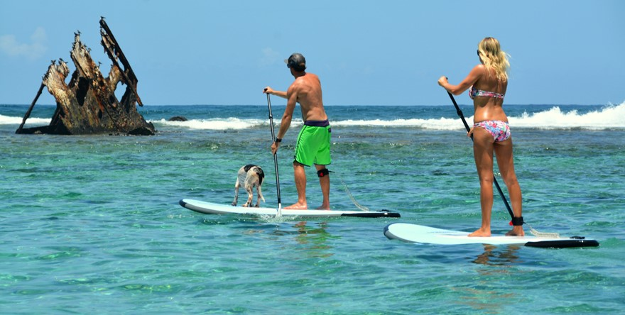 Location  de Stand Up Paddle